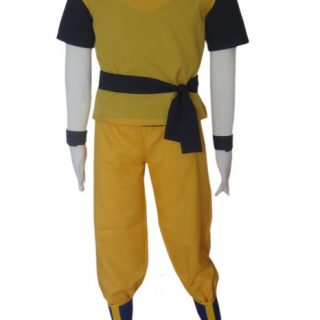 Anime Costumes|Dragon Ball|Male|Female
